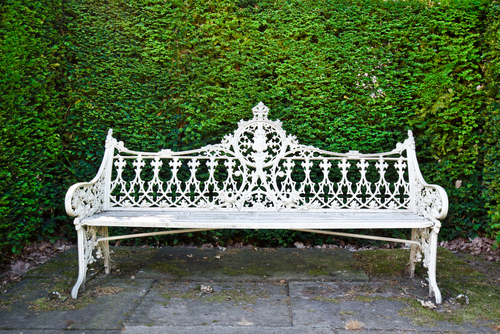 bench against green hedge