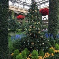 Longwood Gardens Gets Dressed Up For The Holidays