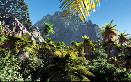 fijian-forest