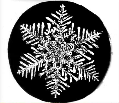 Photos of snowflakes by Wilson Bentley