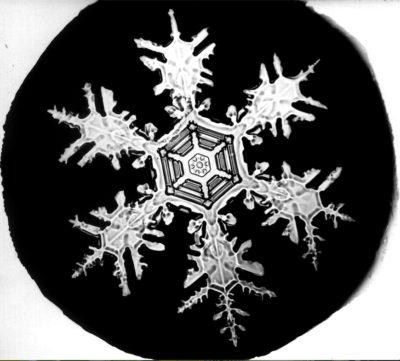 Photos of snowflakes by Wilson Bentley