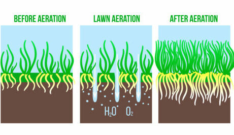 Aeration graphic before and after