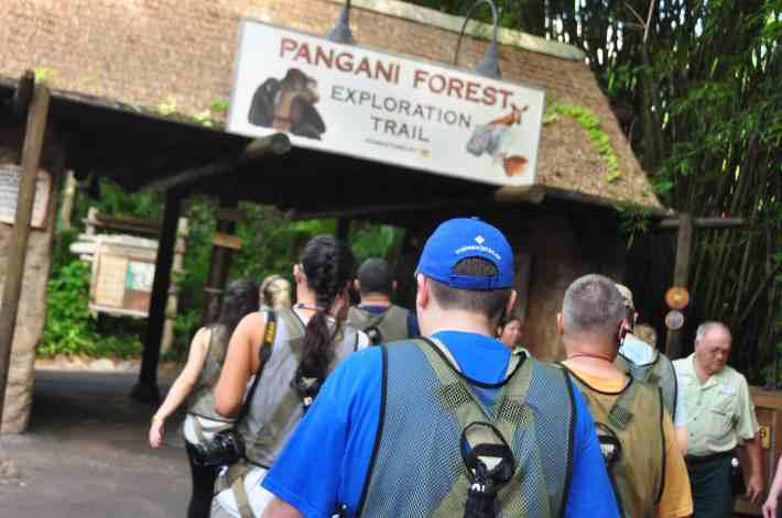 Wild Africa Trek - Pangani Forest