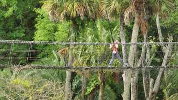 Wild Africa Trek Rope Bridge