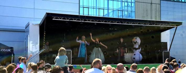 Sage Summer Party Frozen
