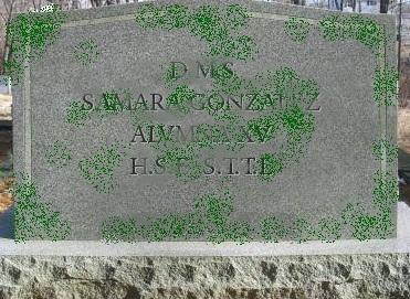 tumba sami