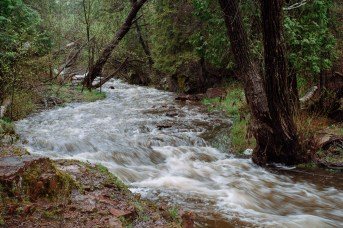 Tischer Creek 5-21-2017-1609