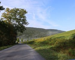 Catskill Mountains and road in summer