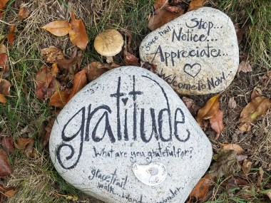 gratitude rock in nature