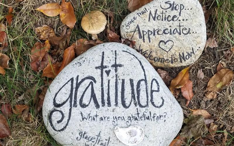 gratitude rock in nature