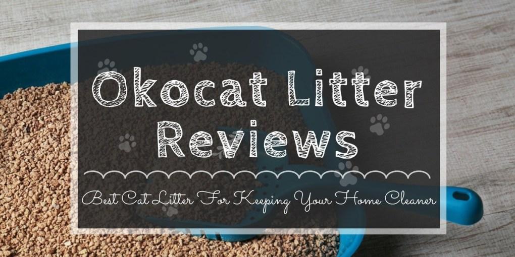 Okocat Litter Reviews Best Cat Litter For Keeping Your