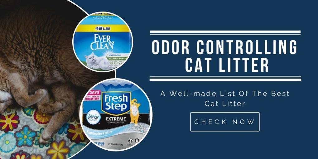 best-odor-controlling-cat-litter