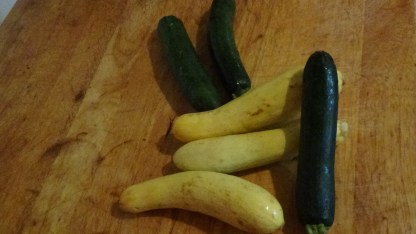 Zucchini contains vitamin A, magnesium, folate, potassium, copper, and phosphorus. Moreover Vitamin B1, vitamin B6, vitamin B2 and calcium, assuring optimal health. Squash has a high content of omega -3 fatty acids, zinc, niacin and protein, together a wonderful side dish. Photo by : Cynthia Gladden