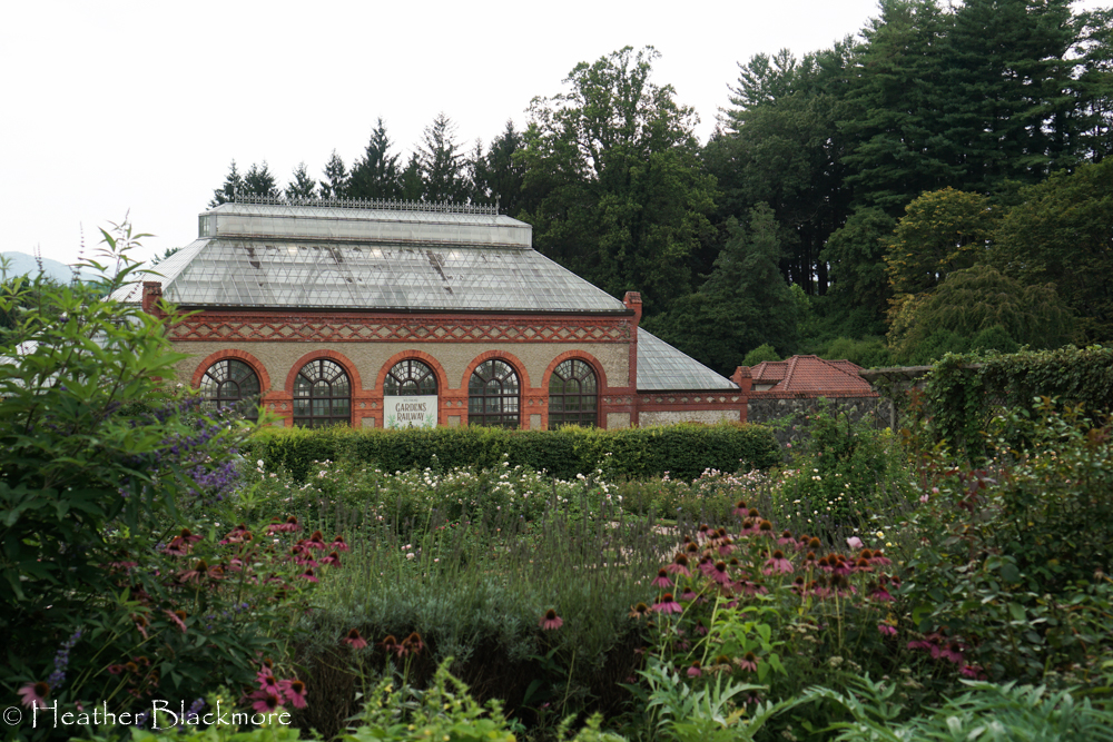 Biltmore Conservatory