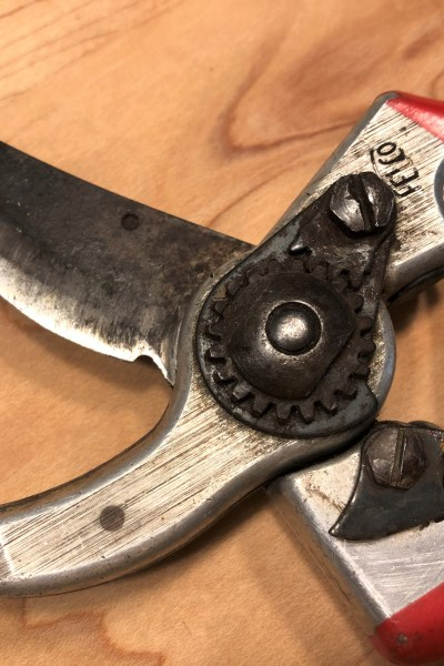How to Restore Dull, Rusted Pruners