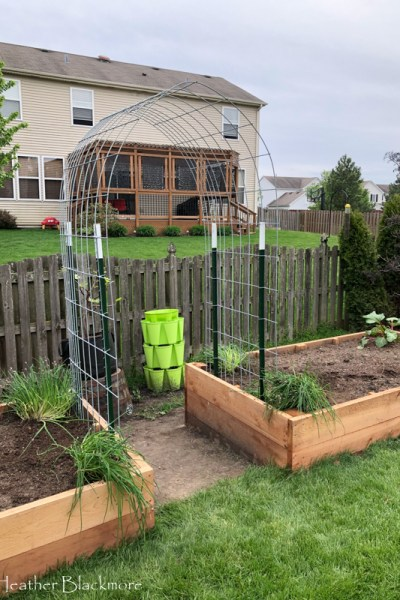 New Raised Cedar Beds and a Hog Panel Trellis