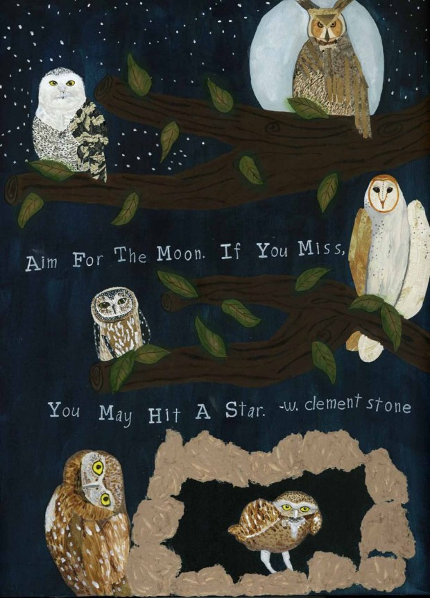 Six different owls done in mixed media sitting in the night sky,
