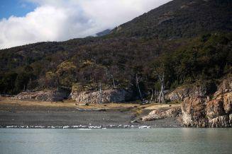 El Chalten & Perito Moreno Glacier_059