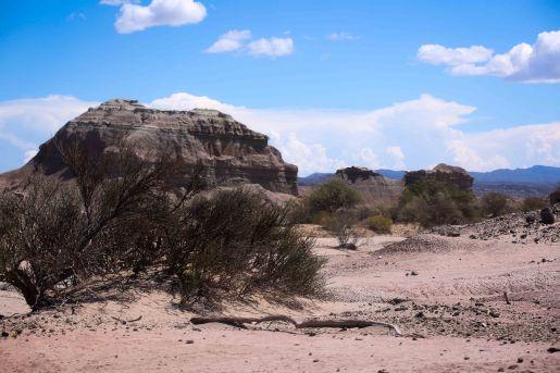 Valle de la Luna_062