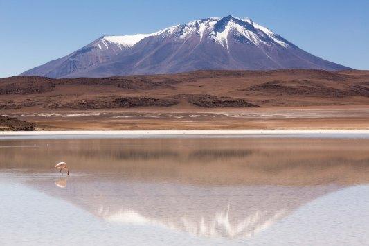 Salt Flat Tour_153