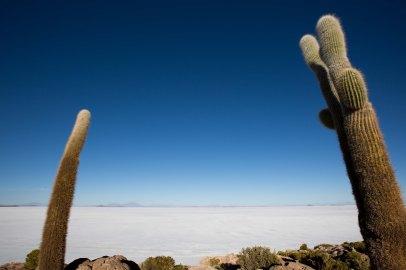 Salt Flat Tour_286