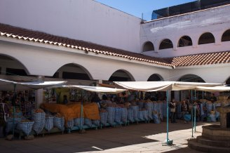 Sucre_046