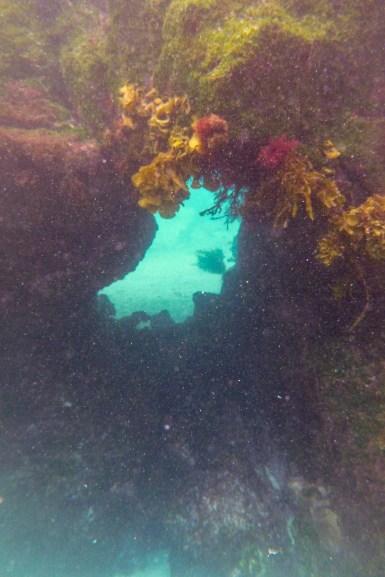 Galapagos_153