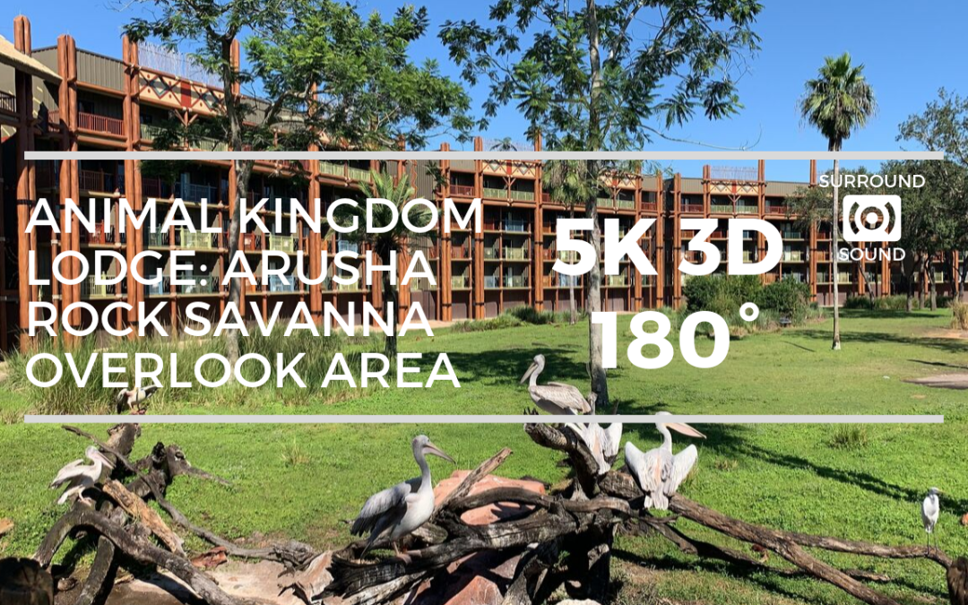 Animal Kingdom Lodge Arusha Rock Savanna Overlook Area (5K 3D 180°)