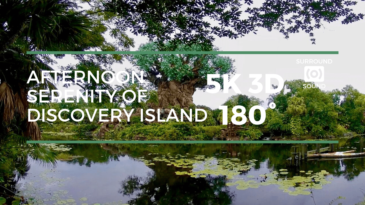 Afternoon Serenity of Discovery Island (5K 3D 180°)