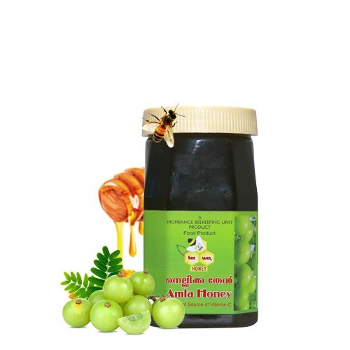 Amla Honey Gooseberry Nellikka Thenu