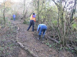 Nunckley Trail young volunteers repairing path
