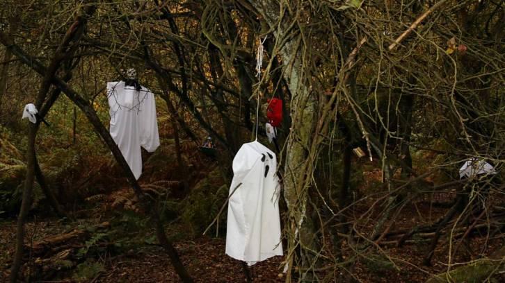 Ghosts - spooky wood