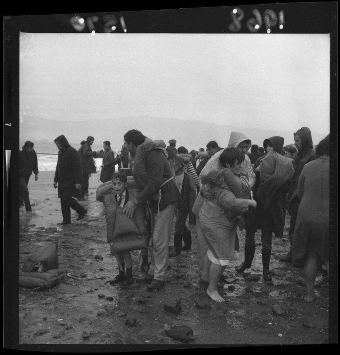 beach seatoun survivors