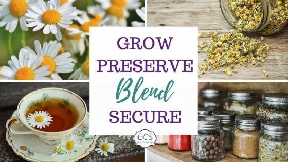 Episode #039: How To Make Your Own Tea Blend ft Farmhouse Teas 1