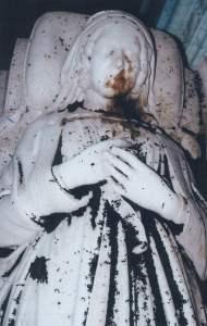 Picture 4 Bat damage - St Nicholas  Stanford -on - avon