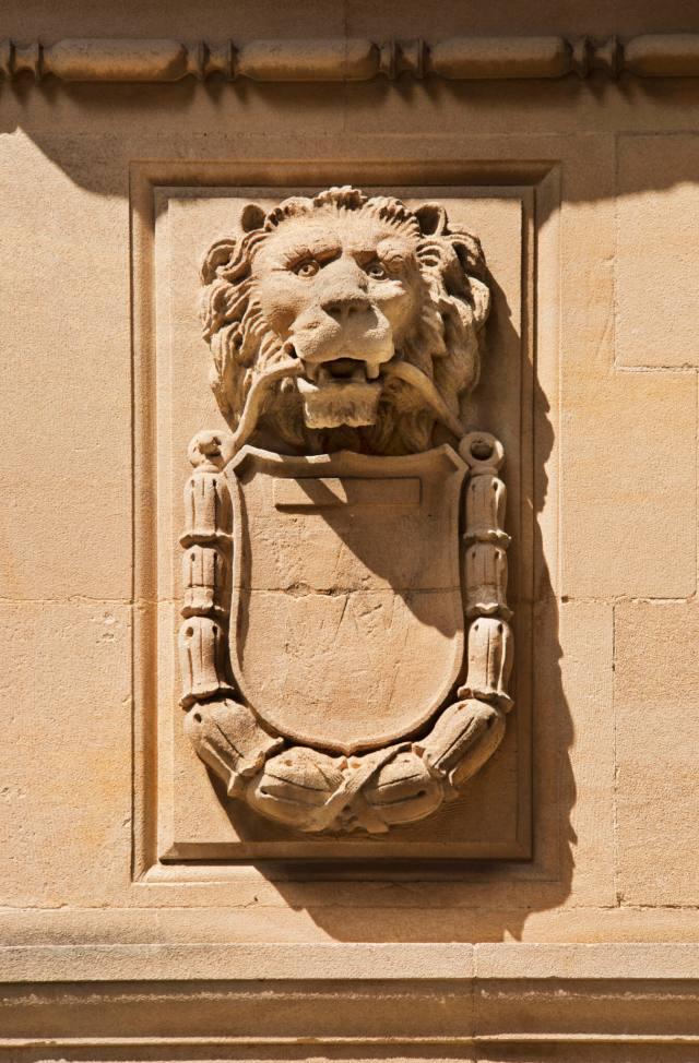 9 Bath Lion