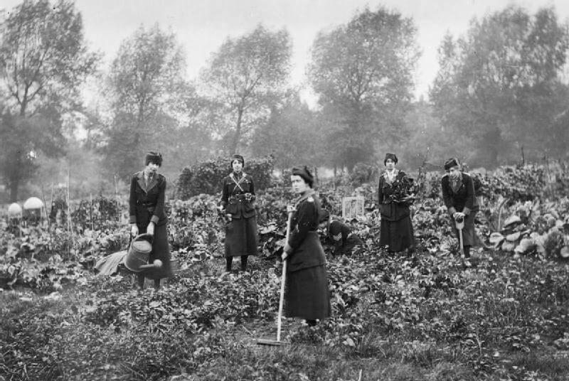 Women_at_work_during_the_First_World_War_Q108033 WIKI