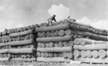 Rolls of fence wire at a supply depot © IWM EA24168