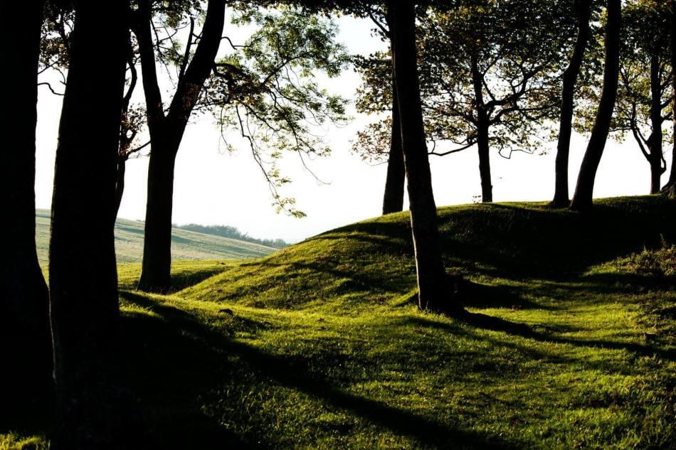 Chanctonbury Ring Hillfort