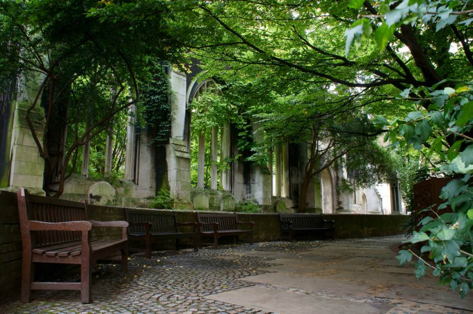 Benches line the ruins of a church, with overgrown trees.