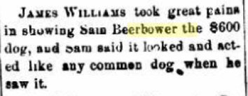 Samuel T. BEERBOWER and the Expensive Dog
