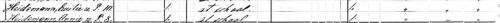 1880 US Federal Census for Emelie Heidemann, via Ancestry.com.