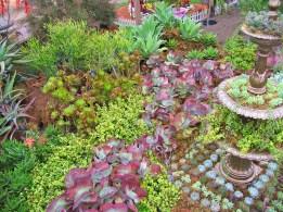 Succulent Garden Exhibit