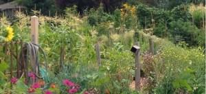 Easy Spring Garden Herkimer NY