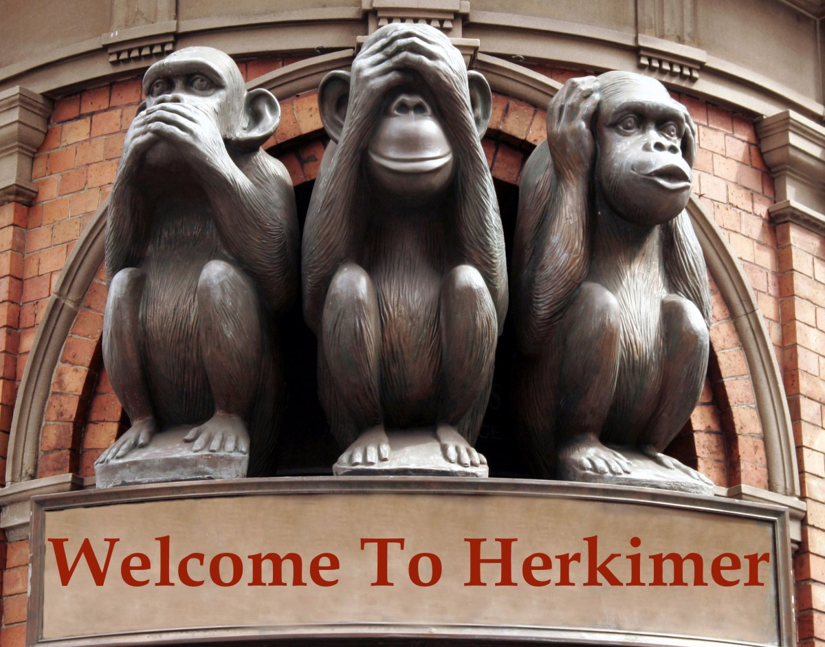 Herkimer Crime 2016 – 20,421 Worldwide Views