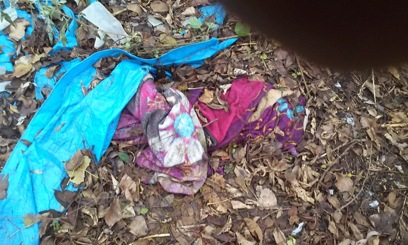 Historic Herkimer Meth Encampment kid's stuff