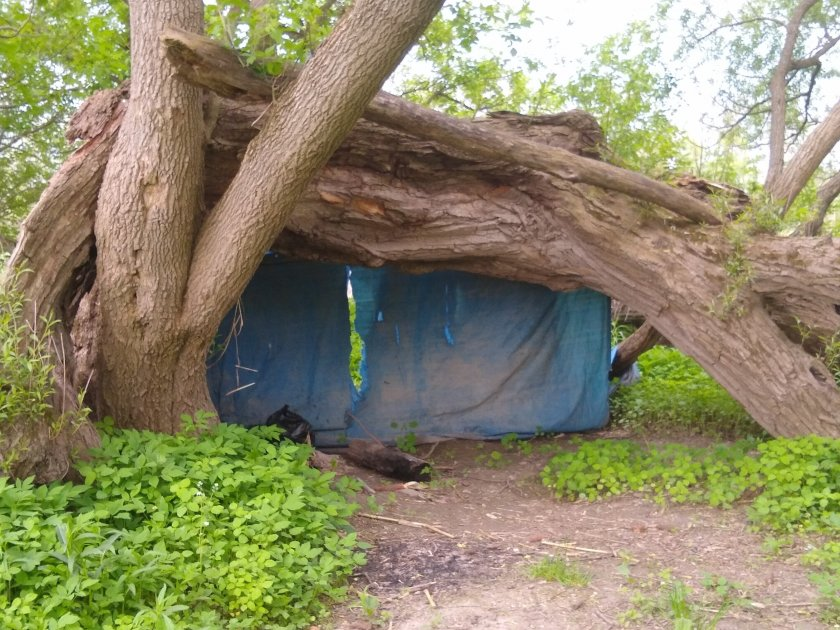 Herkimer Abandoned Campsite