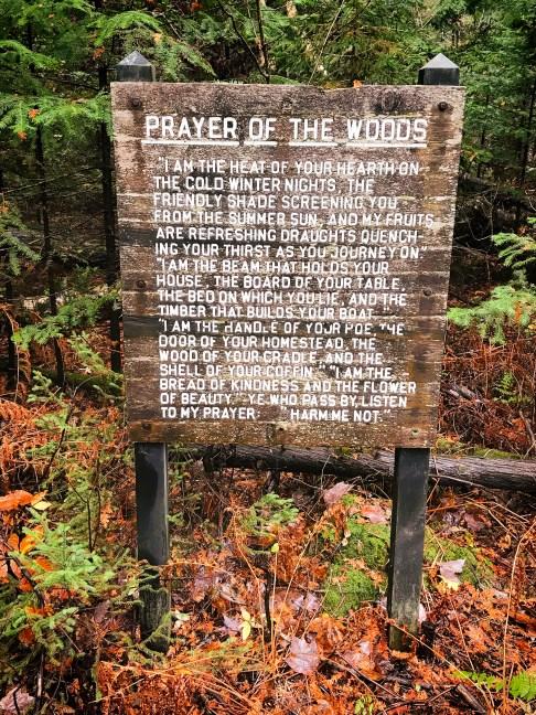 Prayer of the Woods