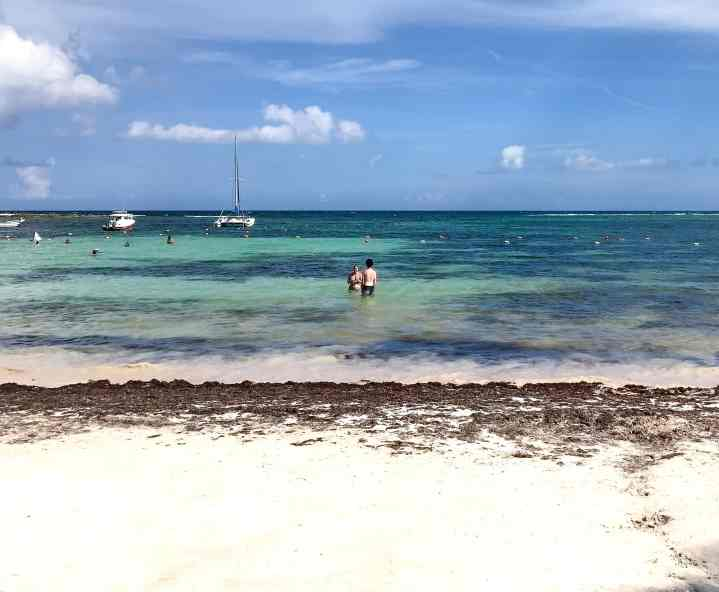 Akumal Beach, Mexico Adventurers Guide to 1 Week in Tulum - Discover where to eat, where to stay, and adventures such as Scuba diving, snorkeling, kayaking and more! Quintana Roo Mexico #mexico #travel #mexicopacking #wheretostay #hiddengem #vacation #travelguide #adventure #traveltips #northamerica #traveldestinations  #bestbeach #cenote #adventure