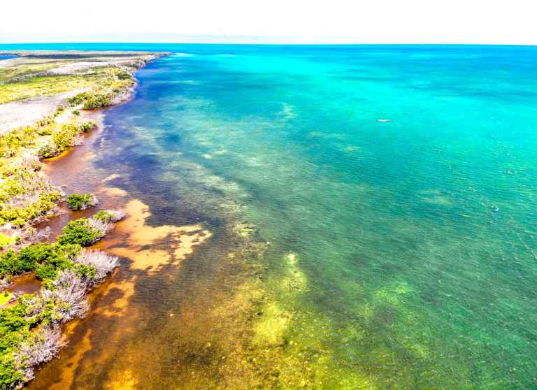Curry Hammock State Park Florida drone shot of water that looks like a rainbow | herlifeadventures | #traveltips #usdestinations #travelhacks #travelguide #adventuretravel #roadtrip #nationalpark #nationalparkroadtrip #travelpacking